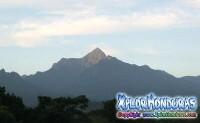 Parque Nacional Pico Bonito Poema