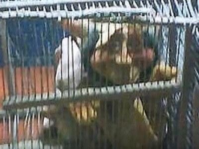 El Duende capturado en Argentina